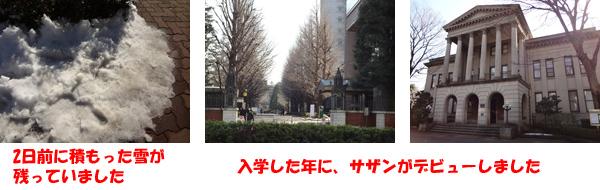 aogaku.jpg