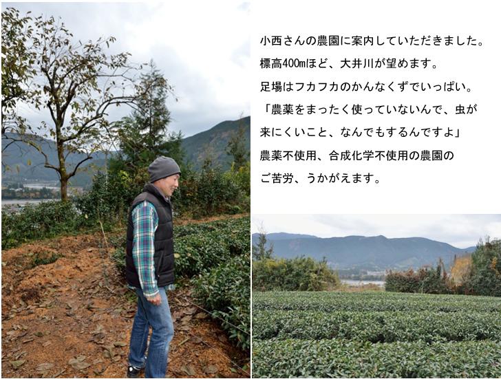 小西さんの農園