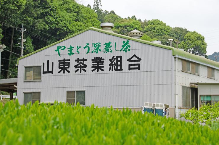 山東茶業組合